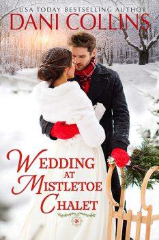 Wedding at Mistletoe Chalet