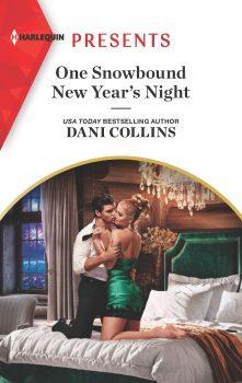 One Snowbound New Year's Night